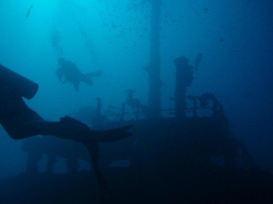 Vilamendhoo Island Resort & Spa : diving on wreck