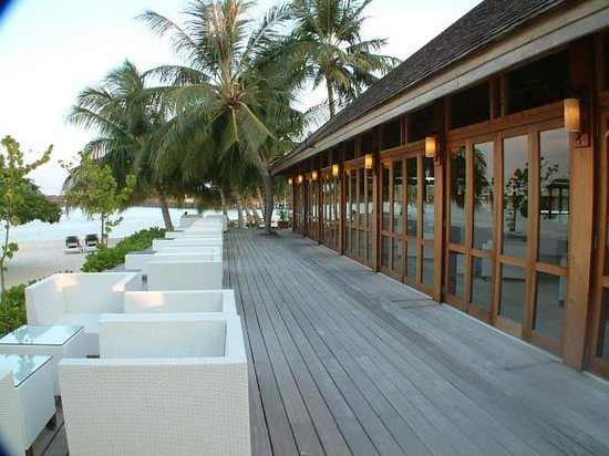 Vilamendhoo Island Resort & Spa : outside area