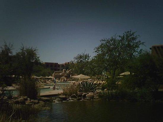 Sheraton Grand at Wild Horse Pass: pool