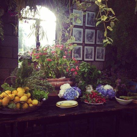 Agriturismo Fattoria Terranova - Zero Km Restaurant: Fresh picked produce of the day!
