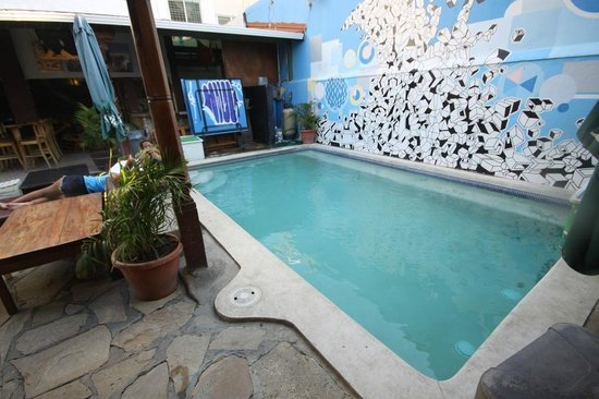 Hostel Pachamama: Pool that is good for dipping but not so much swimming