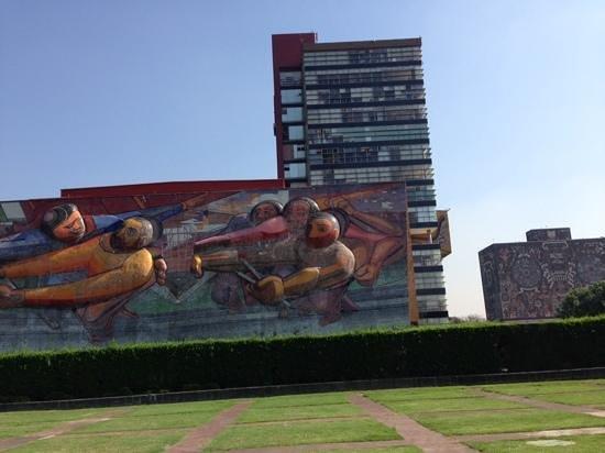 Ciudad Universitaria: 大学構内