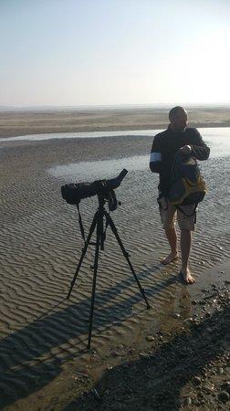 Decouvrons la Baie de Somme Day Tours : Notre guide.