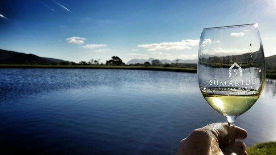 Sumaridge Wine Estate: Sunny day with the most amazing Chardonnay