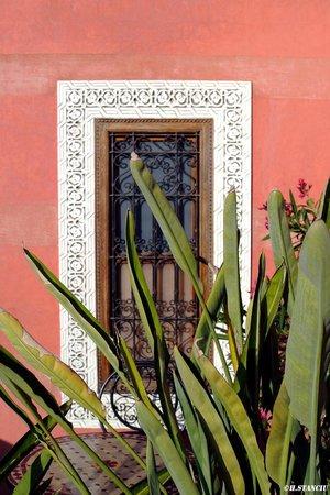 Riad Alili : Sur la terrasse