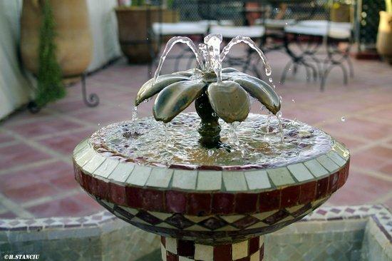 Riad Alili : Fontaine sur la terrasse