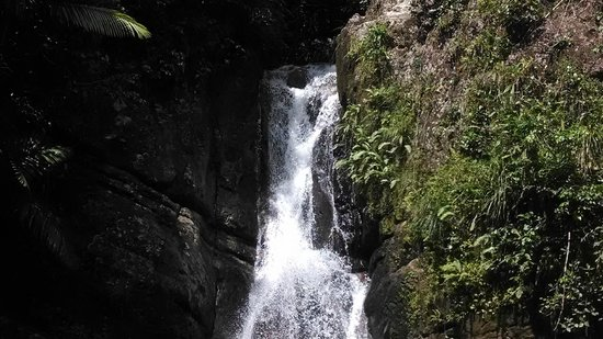 Las Casitas Village, A Waldorf Astoria Resort : Waterfall in the rainforest