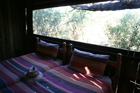 Mosetlha Bush Camp & Eco Lodge: room in the bush