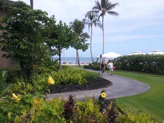 Four Seasons Resort Hualalai: We were 20 steps from the beach.