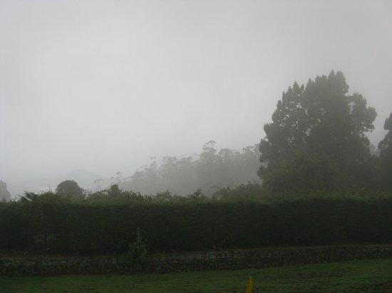 Doddabetta Peak: View of mountains from Doddabetta