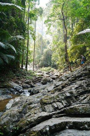 how to get to khao phanom bencha national park
