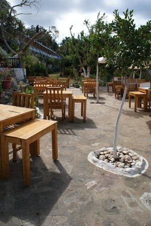 Sultan Garden Restaurant : A view of the restaurant