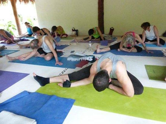 Petit Lafitte: Yoga Class.
