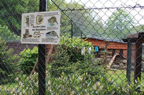 Wildpark Christianental: originelle Gehege