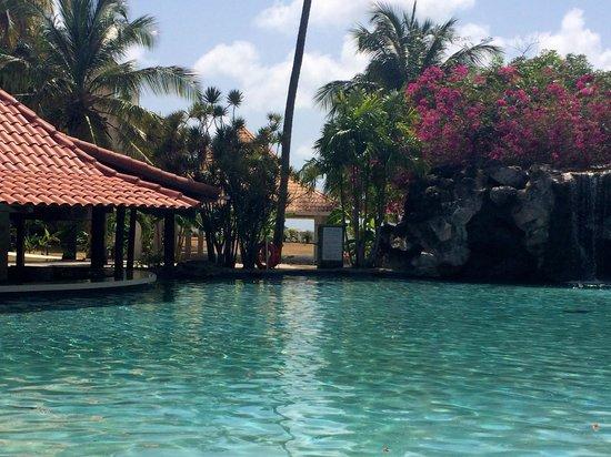 Radisson Grenada Beach Resort: Pool