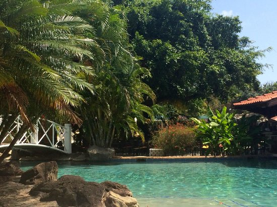 Radisson Grenada Beach Resort: Grounds by Pool