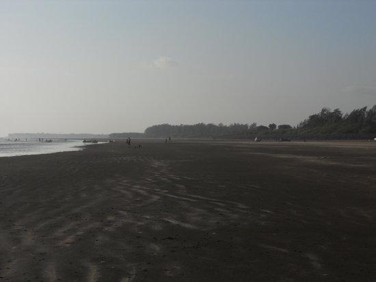Nagaon Beach: nagaon