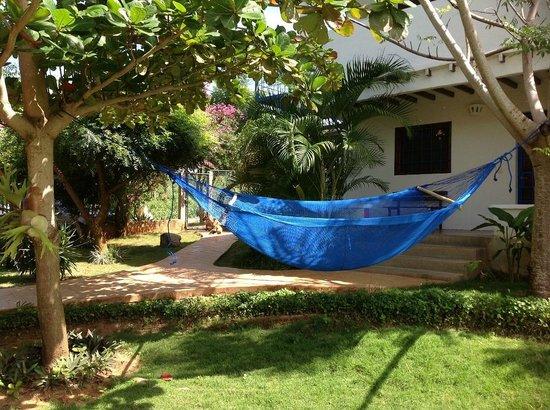 Posada Casa Las Trinitarias: Chinchorro a la sombra del Almendron