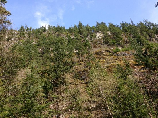 MTN Fun Basecamp: This cliff overlooks our property.