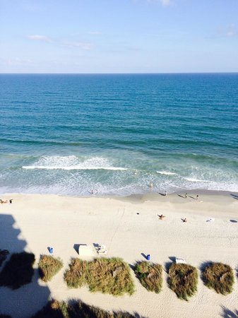 Coral Beach Resort & Suites: View from our room