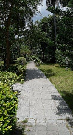 Bottle Beach 1 Resort: allée pour joindre notre bungalow