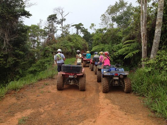 Jungle ATV Quad Tours: Stop to take in the view.