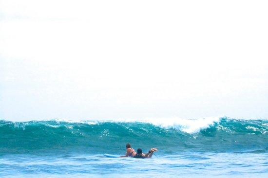 surf lessons playa negra
