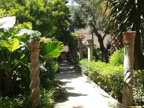 Banys Arabs (Arab Baths) : One path within the garden