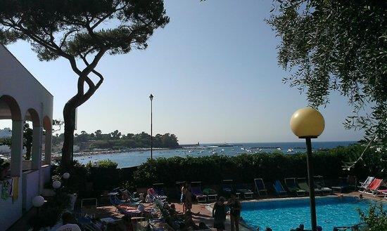 Grand Hotel Ischia Lido: Panorama dalla piscina