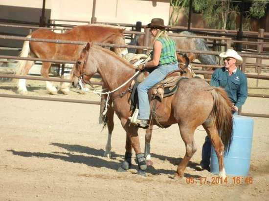 White Stallion Ranch : Barrel racing