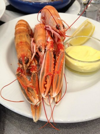 LochLeven Seafood Cafe : Langoustines with Lemon & Mayonnaise