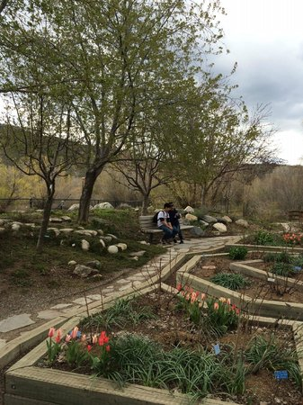 More Flowers At The Park Picture Of Yampa River Botanic Park Steamboat Springs Tripadvisor