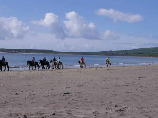 Vagabond Tours: on the beach in dingle (horse ride optional activity)