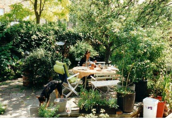 Hampstead Village Guesthouse: Garden