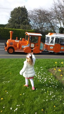Toots Malahide Road Train: And the Children love Toots!