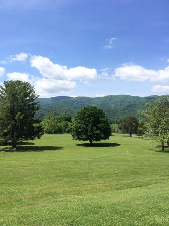 The view from the deck of Rickard Ridge BBQ