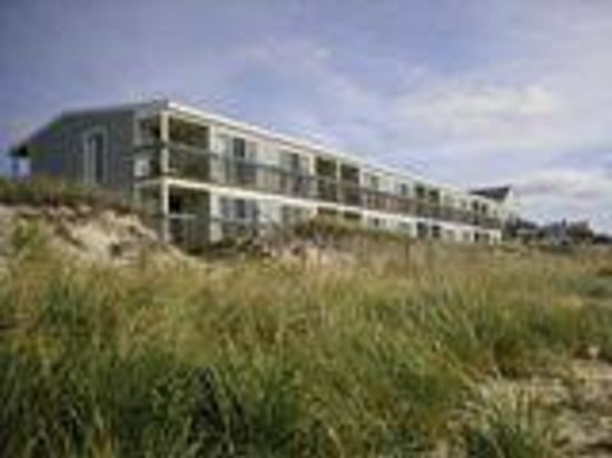 Horizons Beach Resort: Shore Front