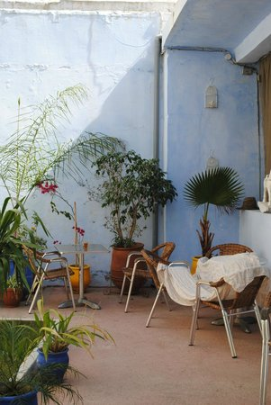 Dar Omar Khayam: gezellig met diverse planten