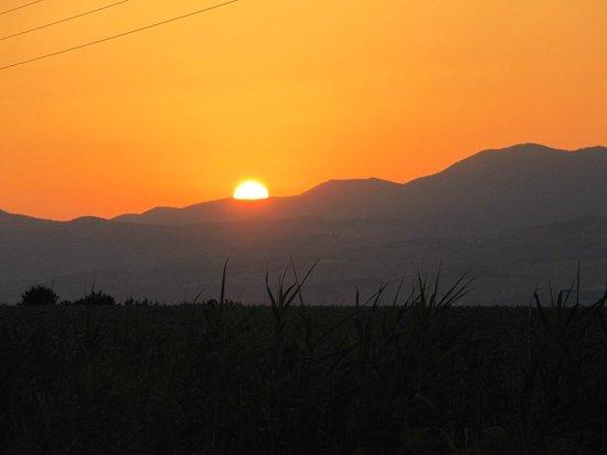 Peace Vista Country Lodge (Mitzpe Hashalom): Gorgeous!