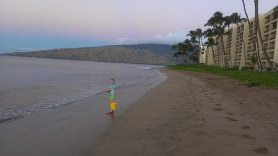 Kealia Resort: Sugar Beach early morning
