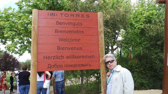 Torres : винодельня Торрес