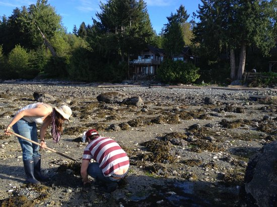 Digging for clams in front of Heron House. And yes, that is the house in the background.