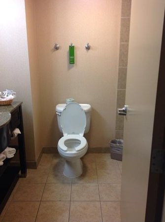 Hampton Inn & Suites Houston-Bush Intercontinental Airport : clean bathroom