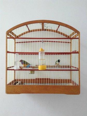 Aram Yami Hotel: birds