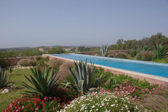 Villa Gonatouki: Le bassin de nage