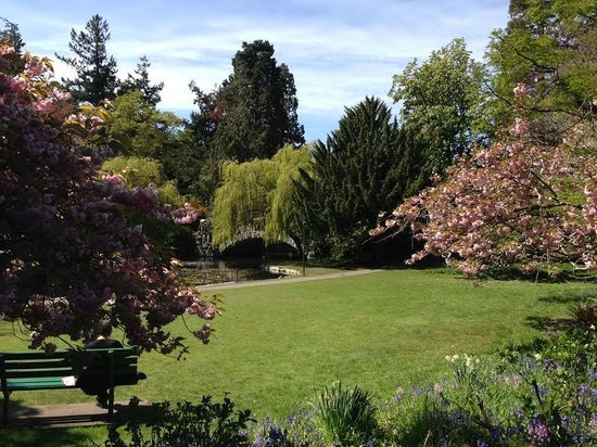 Harbour Towers Hotel & Suites: Beacon Hill Park 5 minute walk away