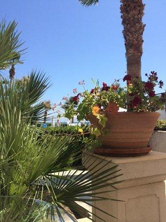 Palm Beach Hotel & Bungalows : hotel Palm beach