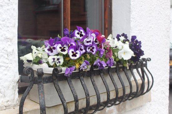 The Clachan Inn: Pretty window box