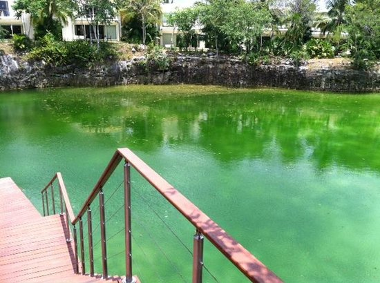 Blue Diamond Luxury Boutique Hotel: Cenote