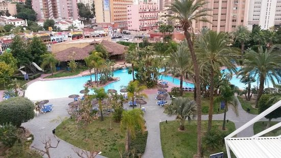 Melia Benidorm: View of poo and grounds from room 302